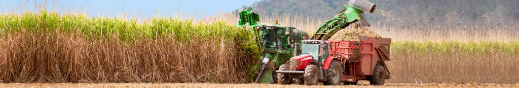 Agribusiness header